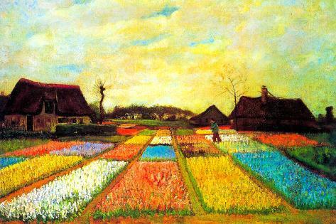 Vincent van Gogh Holland Flower Bed Poster Premium Poster