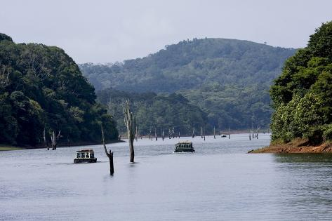 Go On An Awesome Adventure Trip To Thekkady This Holiday