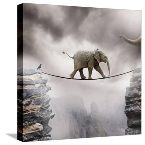 Babyelefant Trykk på strukket lerret