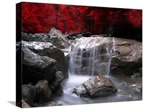 Rød visjon Trykk på strukket lerret
