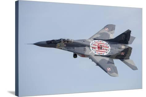 """24/"""" x 16/"""" Poster MIG29 POLISH Military Fighter Jet"""