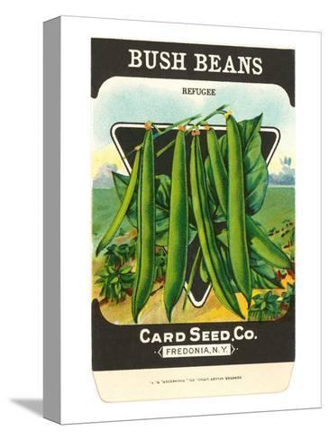 Bush Bean Seed Packet Pingotettu canvasvedos
