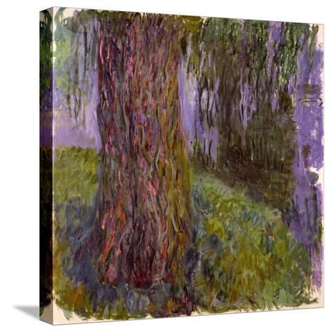 Weeping Willow and the Waterlily Pond, 1916-19 Reproducción de lámina sobre lienzo