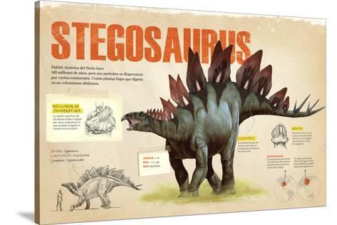 Infografia Del Stegosaurus Dinosaurio Perteneciente A Los Ornitisquios Herbivoro Del Jurasico Prints Allposters Com Hay mucho escrito sobre ello. infografia del stegosaurus dinosaurio perteneciente a los ornitisquios herbivoro del jurasico