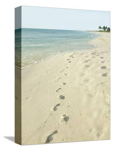 Footprints In Sand At Grace Bay Beach Providenciales Turks And Caicos Islands West Ins Photographic Print By Kim Walker Allposters
