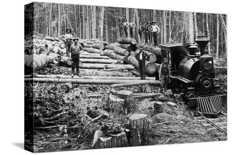 Loggers and Logging Locomotive Pingotettu canvasvedos