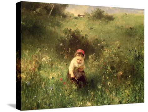 Young Girl in a Field Stretched Canvas Print