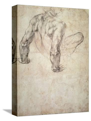 W.63R Study of a Male Nude, Leaning Back on His Hands Reproducción de lámina sobre lienzo