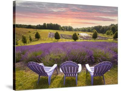 Lavender Chairs, Horton Bay, Michigan U002714 Photographic Print By Monte  Nagler At AllPosters.com