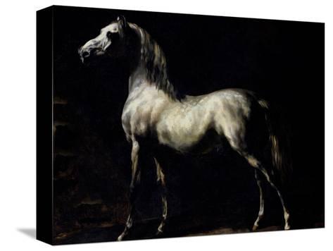 Study of a Dapple Grey Reproducción de lámina sobre lienzo