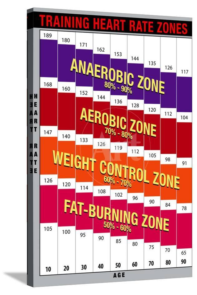 Training Heart Rate Zones Chart Bright Prints At Allposters