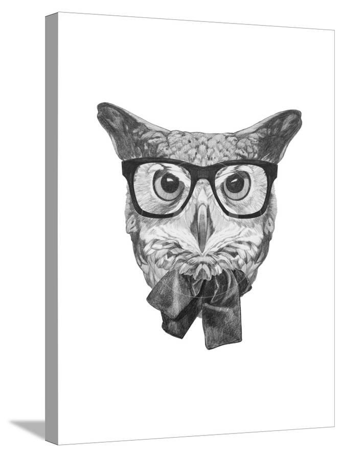 85e452a559d Original Drawing of Owl with Glasses and Bow Tie. Isolated on White  Background. Posters by victoria novak at AllPosters.com