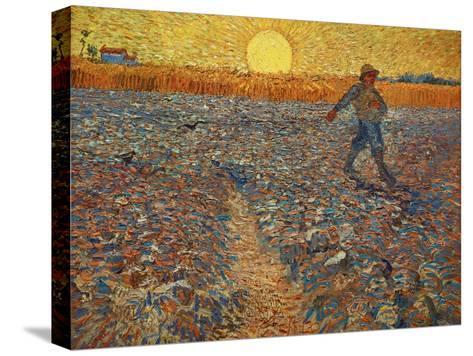 The Sower, c.1888 Impressão em tela esticada