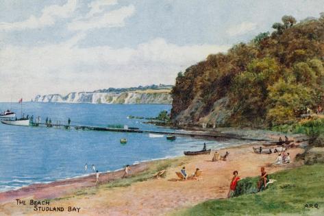 Image result for studland Bay