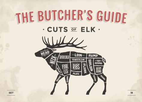foxysgraphic cut of meat butcher diagram elk_a G 15621632 4985946 elk meat diagram wiring diagrams lose