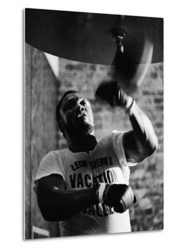 Boxing Champ Joe Frazier Working Out for His Scheduled Fight Against Muhammad Ali Metal Print