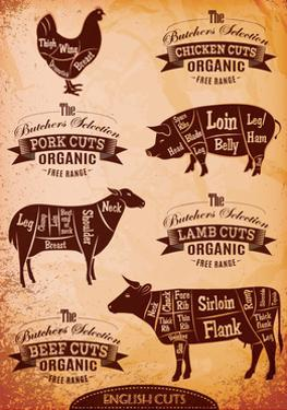 Diagram of Cut Carcasses Chicken, Pig, Cow, Lamb by 111chemodan111