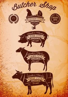 Vector Diagram Cut Carcasses Chicken, Pig, Cow, Lamb by 111chemodan111