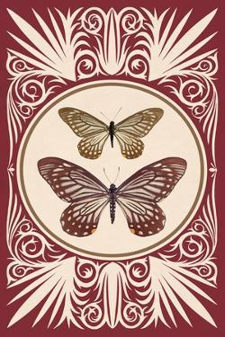 Vintage Butterfly Duo by 13.0