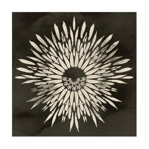 Feathers Mandala I by 16.0