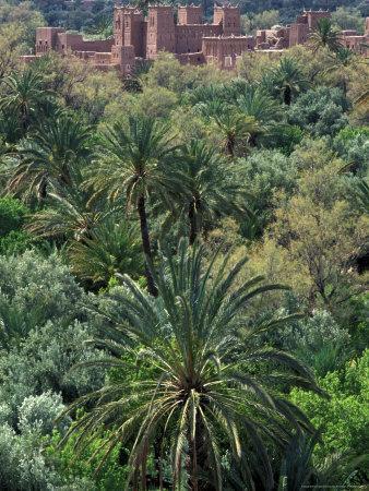 https://imgc.allpostersimages.com/img/posters/17th-century-kasbah-amerhidl-and-the-lush-skoura-palmery-morocco_u-L-P586K40.jpg?p=0