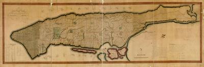 https://imgc.allpostersimages.com/img/posters/1807-new-york-city-island-of-manhattan-16x63-new-york-united-states_u-L-PHNYT20.jpg?p=0