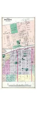 1876, Monroe City 3, Michigan, United States