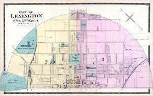 1877, Lexington - Wards 2 and 3, Kentucky, United States