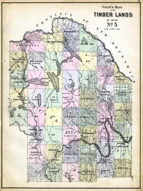 1884, Fort Kent, Aroostook, Presque Island, Eagle Lake, Fort Fairfield, Portage