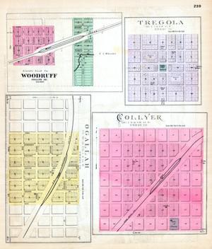 1887, Woodruff, Tregola, Ogallah, Collyer, Kansas, United States