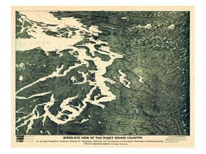 1891, Puget Sound Bird's Eye View, Washington, United States