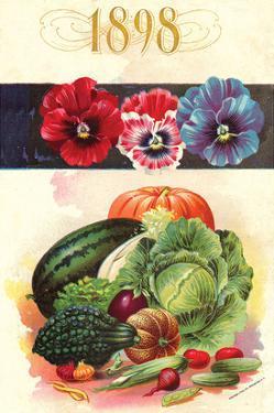 1898 Flower Vegetable Catalog
