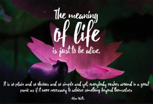 Meaning Of Life (Nebula Lotus) by 19