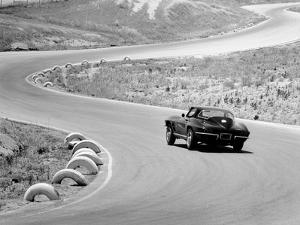 1964 Chevrolet Corvette Stingray on a Winding Racetrack, (C1964)