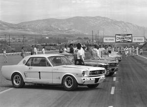 1966 Riverside SCCA Trans-Am Race