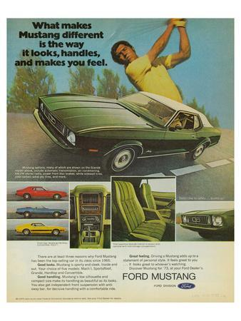 https://imgc.allpostersimages.com/img/posters/1973-mustang-the-way-it-looks_u-L-F87WZA0.jpg?p=0