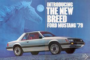 1979 Mustang - the New Breed