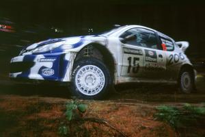1999 Peugeot 206 WRC Network Q Rally, Gronholm