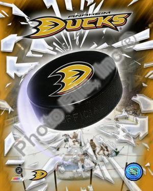 2009-10 Anaheim Ducks Team Logo