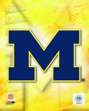 2009 University of Michigan Team Logo