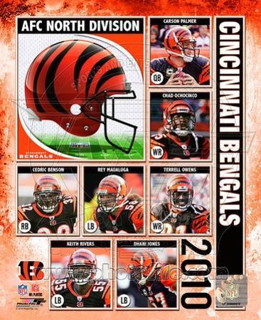 2010 Cincinnati Bengals Team Composite