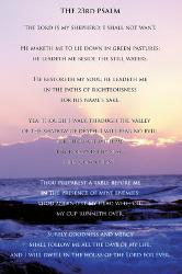 35th psalm