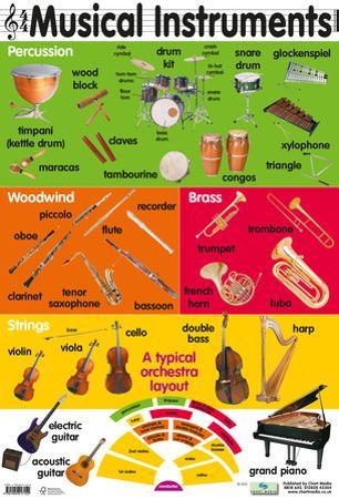 29 Musical Instruments