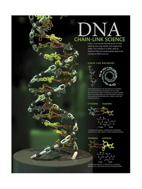 3D Poster Illustration of Dna Components Functionally Compared to a Chain Link