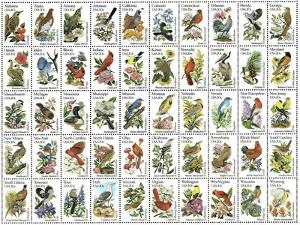 50 Birds