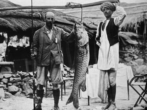 59 lb Mahseer, Caught by Capt. H. B. D. Campbell, R.E., in the Upper Ganges, c1903, (1903)