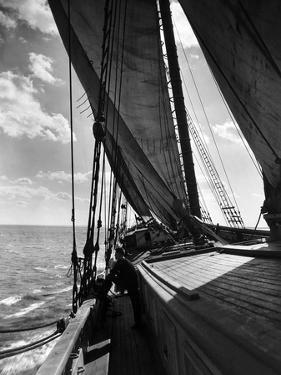 Schooner Doris Hamlin Bound Down Chesapeake Bay from Baltimore to Newport News by A. Aubrey Bodine