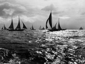 Skipjacks on the Chesapeake Bay Near Sharps Island by A. Aubrey Bodine