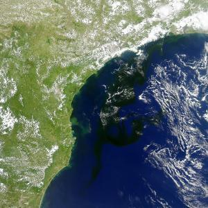A Bloom of Microscopic Organisms Off the Coast of Brazil