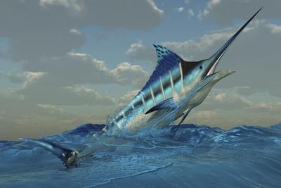 https://imgc.allpostersimages.com/img/posters/a-blue-marlin-bursts-from-ocean-waters_u-L-Q1I33KY0.jpg?artPerspective=n